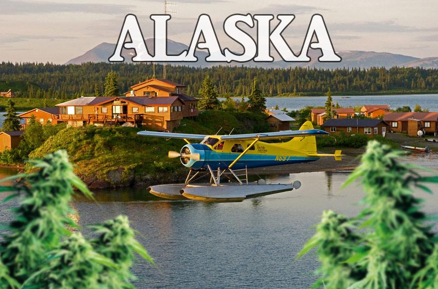 alaska-marijuana