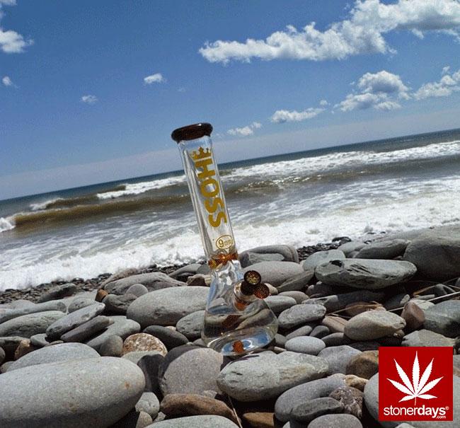 blunts-bongs-marijuana-pot-stonerdays (433)