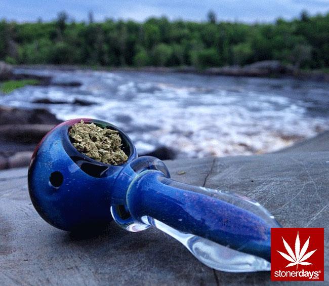 blunts-bongs-marijuana-pot-stonerdays (460)