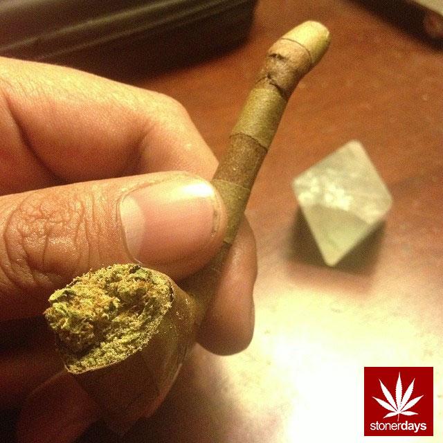 blunts-bongs-marijuana-pot-stonerdays (569)