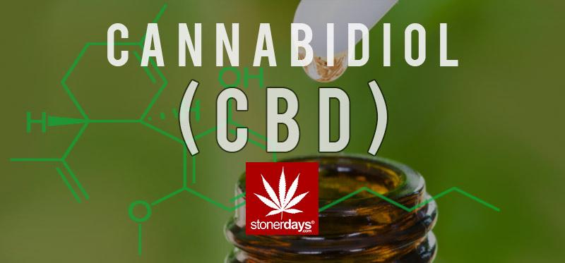 cbd-marijuana-stonerdays