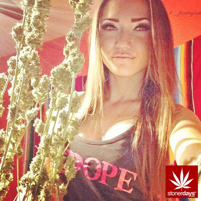 dabs-weed-marijuana-stonerdays-stayblazed (182)