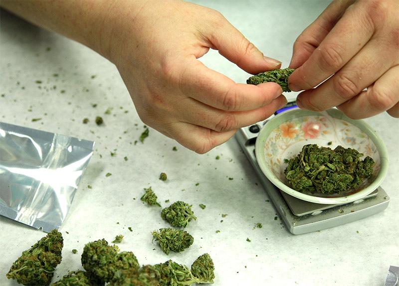 marijuana-bussiness