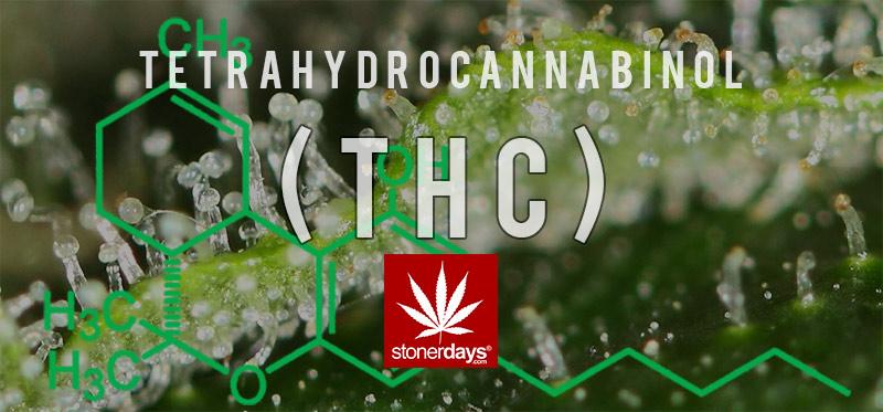 thc-marijuana-stonerdays-1