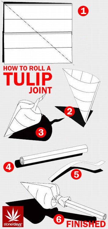 tulip-joint