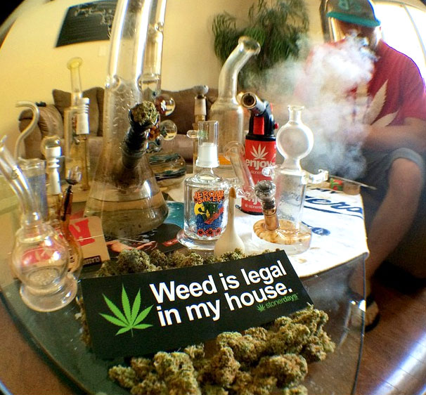 weed-is-legal-in-my-house-stickers