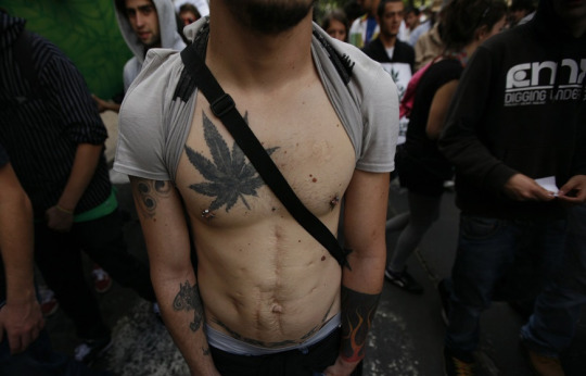 marijauan-weed-tattoos-stonerdays (22)