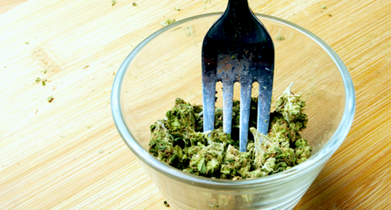Eating-Marijuana-Cooking-Food-with-Weed-Fork-and-Edible-Pot-Bud-Shutterstock-800x430 (1)