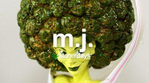 mj-short-for-marijuana