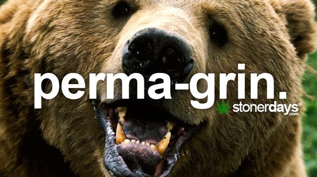 perma-grin-marijuana