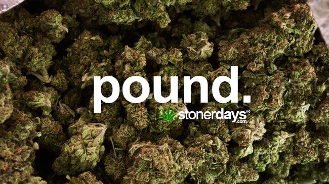pound-of-marijuana