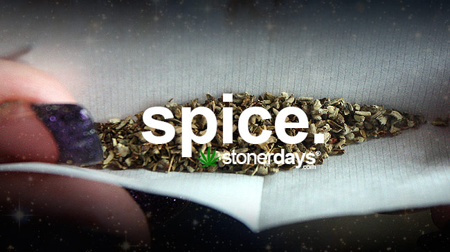 spice-marijuana-term