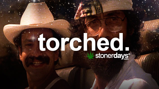 torched-marijuana-term
