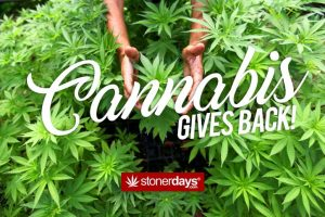 cannabis-gives-back-1