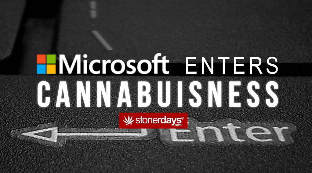 microsoft-cannabis