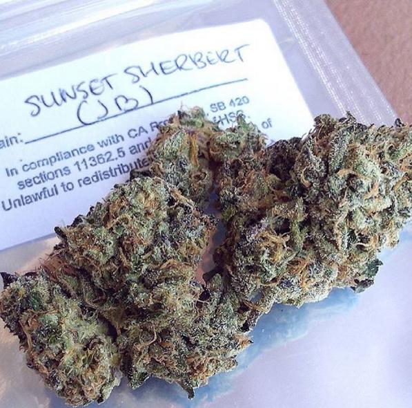 we smoke weed-17