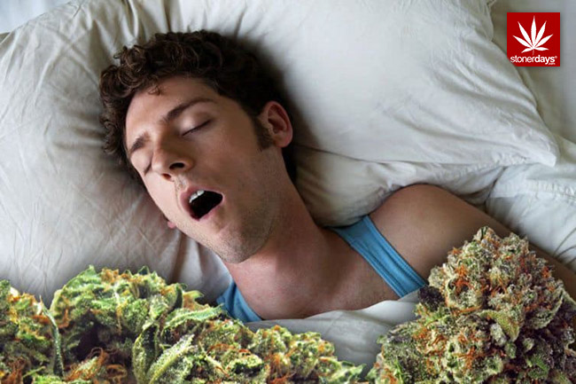 cannabis-and-sleep-marijuana-420-weed