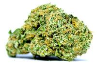 cannabis and sleep marijuana nug