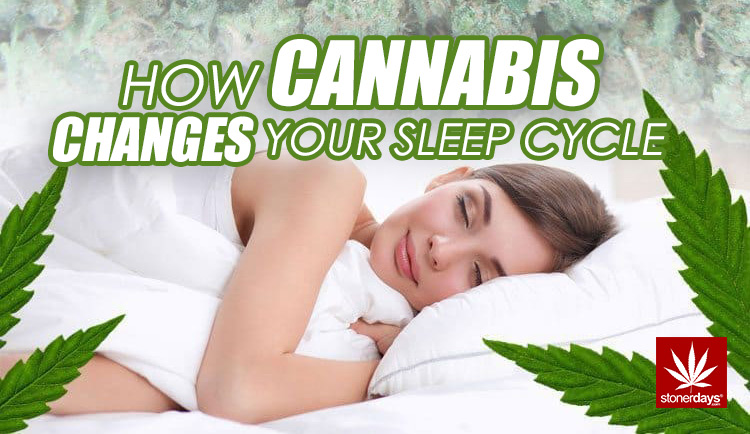 Image result for How Cannabis Changes Your Sleep Cycle