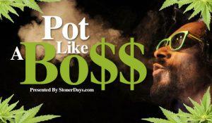 pot-like-a-boss