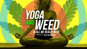 Yoga And Weed Is All We Really Need: Elevated Yoga Classes
